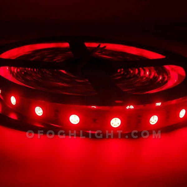 ریسه ال ای دی LED مدل 50-50 افق